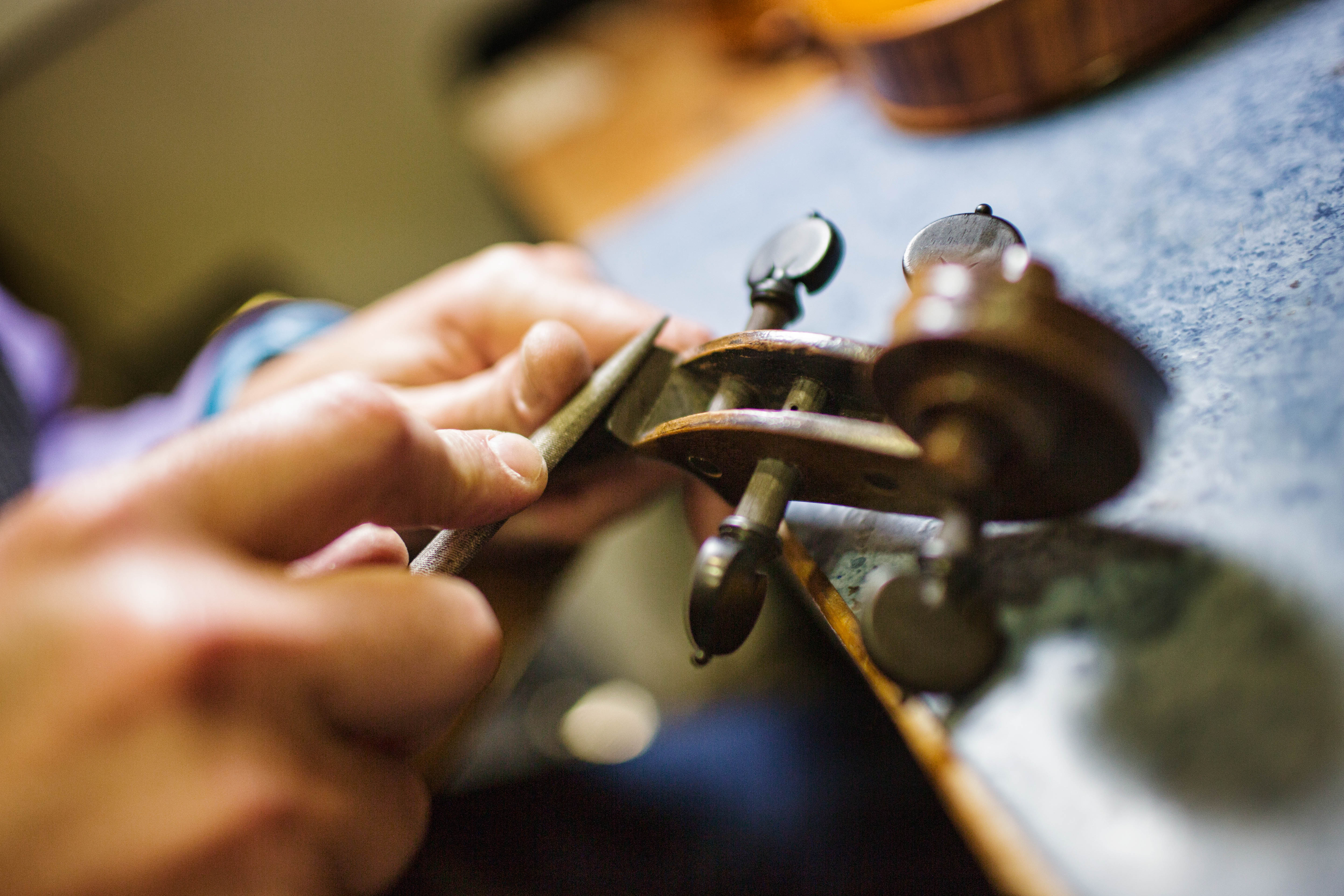 Violin maker assistant WANTED
