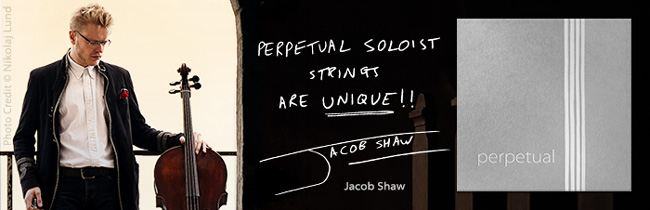 slide_shaw-jacob_650x210